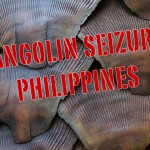 Philippines: Pangolin Scales and Flesh Seized at Airport