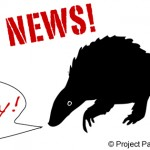 IUCN-SSC Specialist Group Formed for Pangolins