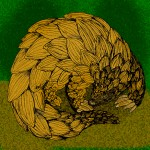 25 Facts About Pangolins!
